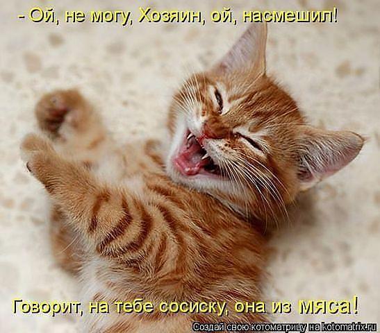 http://www.anekdotov-mnogo.ru/image-prikol/smeshnie_kartinki_1362061525280220131311.jpg