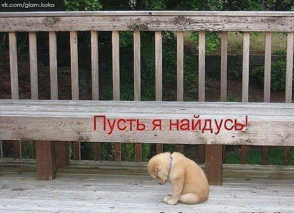 http://www.anekdotov-mnogo.ru/image-prikol/smeshnie_kartinki_1362166064010320132100.jpg