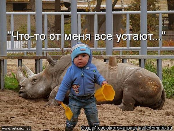 http://www.anekdotov-mnogo.ru/image-prikol/smeshnie_kartinki_136258978006032013376.jpg