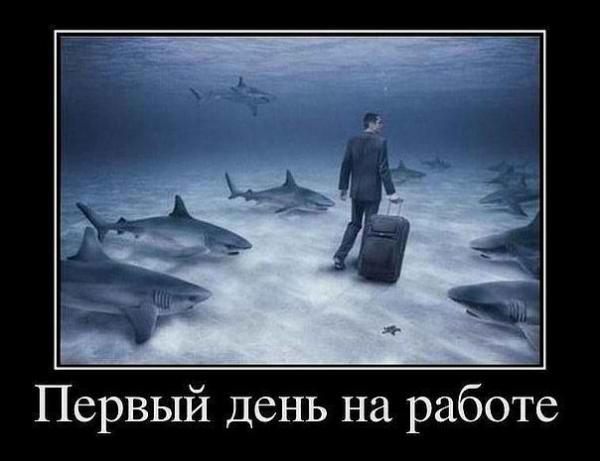 http://www.anekdotov-mnogo.ru/image-prikol/smeshnie_kartinki_1362600810070320132206.jpg
