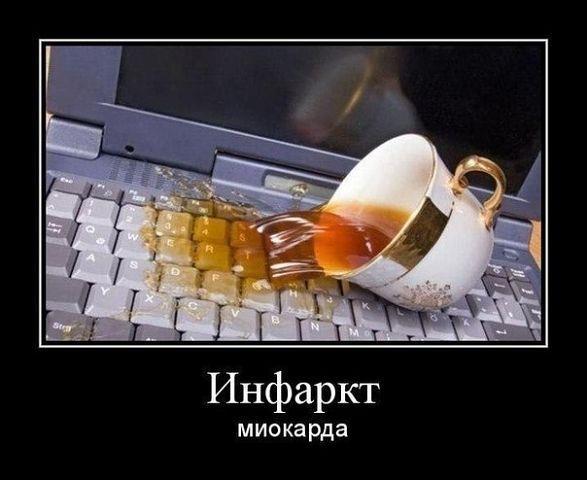 http://www.anekdotov-mnogo.ru/image-prikol/smeshnie_kartinki_1362736705080320131147.jpg