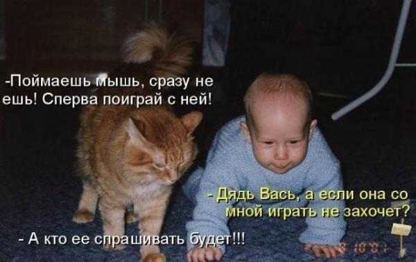 smeshnie_kartinki_1362930212100320131406