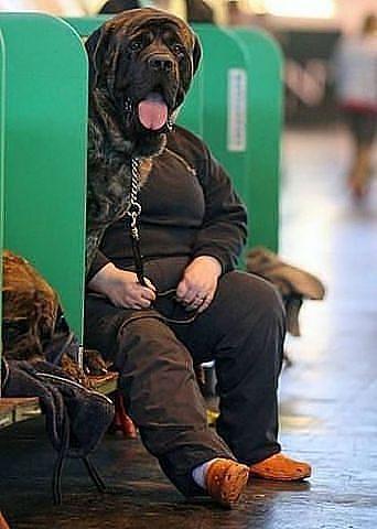 http://www.anekdotov-mnogo.ru/image-prikol/smeshnie_kartinki_1363012339110320132442.jpg