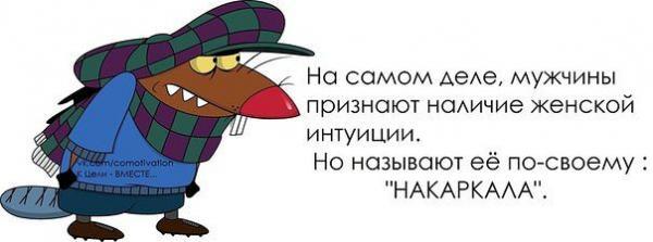 http://www.anekdotov-mnogo.ru/image-prikol/smeshnie_kartinki_136326349214032013170.jpg
