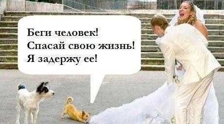 http://www.anekdotov-mnogo.ru/image-prikol/smeshnie_kartinki_136363898619032013281.jpg