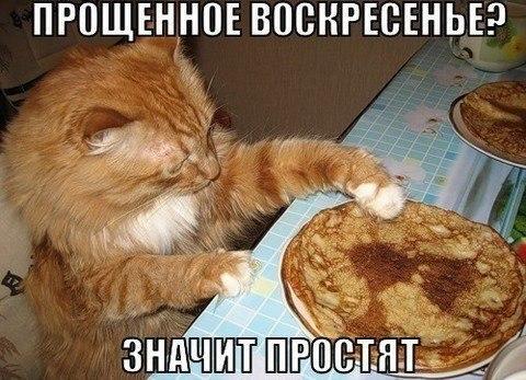 http://www.anekdotov-mnogo.ru/image-prikol/smeshnie_kartinki_1363714476190320131514.jpg
