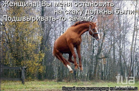 http://www.anekdotov-mnogo.ru/image-prikol/smeshnie_kartinki_136395025222032013590.jpg