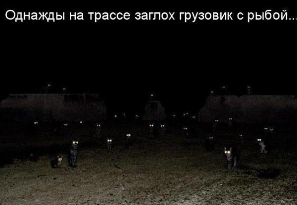 http://www.anekdotov-mnogo.ru/image-prikol/smeshnie_kartinki_136415187124032013775.jpg
