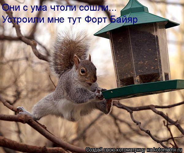 http://www.anekdotov-mnogo.ru/image-prikol/smeshnie_kartinki_1364714930310320131793.jpg