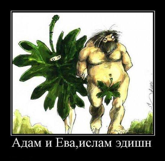 smeshnie_kartinki_136483316201042013582.