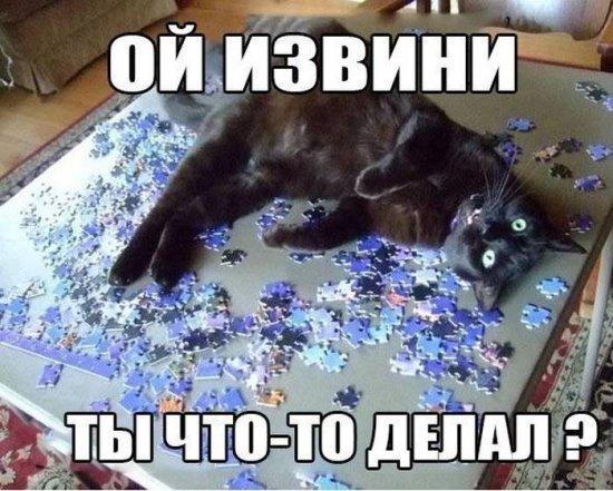 smeshnie_kartinki_1365032996040420132202
