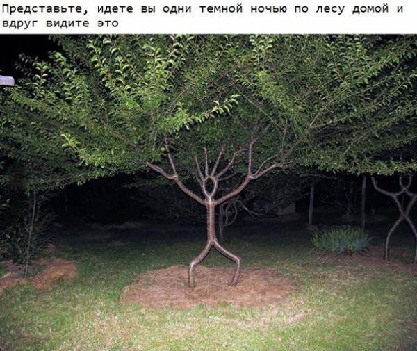 http://www.anekdotov-mnogo.ru/image-prikol/smeshnie_kartinki_1370029125310520132882.jpg