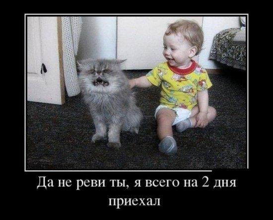 Звери в теме;) - Страница 4 Smeshnie_kartinki_137363974512072013256