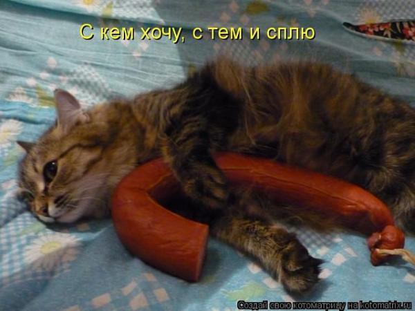 http://www.anekdotov-mnogo.ru/image-prikol/smeshnie_kartinki_1375795253060820132468.jpg