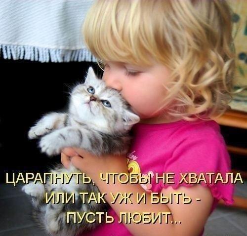 http://www.anekdotov-mnogo.ru/image-prikol/smeshnie_kartinki_137657944315082013544.jpg