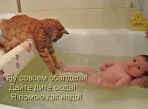 http://www.anekdotov-mnogo.ru/image-prikol/smeshnie_kartinki_137706232721082013197.jpg