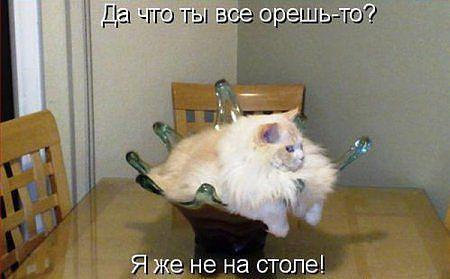 http://www.anekdotov-mnogo.ru/image-prikol/smeshnie_kartinki_1377470112260820132524.jpg