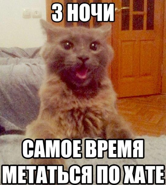 http://www.anekdotov-mnogo.ru/image-prikol/smeshnie_kartinki_1377702490280820131388.jpg