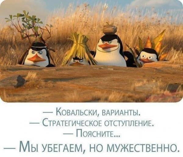 http://www.anekdotov-mnogo.ru/image-prikol/smeshnie_kartinki_137915162314092013638.jpg