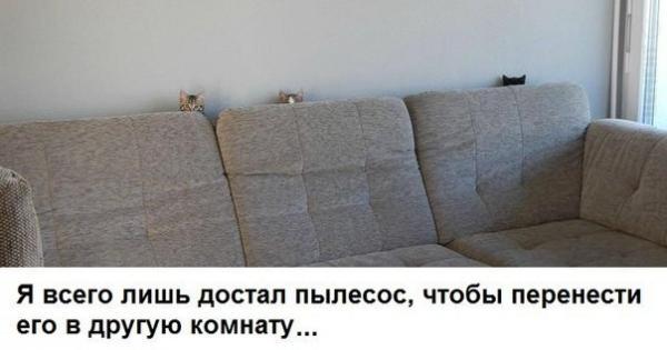 http://www.anekdotov-mnogo.ru/image-prikol/smeshnie_kartinki_138130143849.jpg