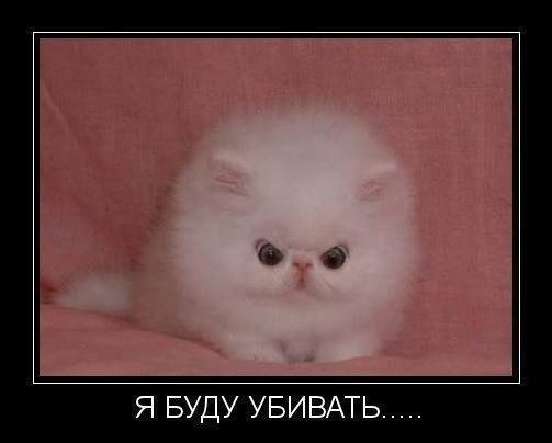 http://www.anekdotov-mnogo.ru/image-prikol/smeshnie_kartinki_138209559553.jpg