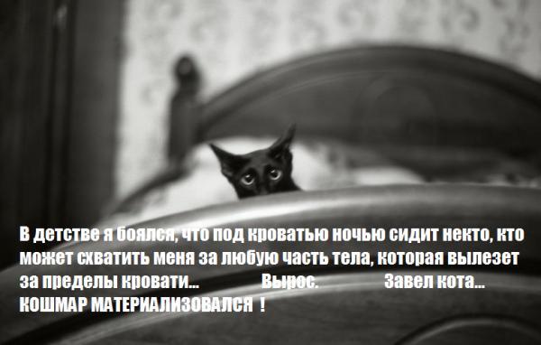 http://www.anekdotov-mnogo.ru/image-prikol/smeshnie_kartinki_138477688627.jpg