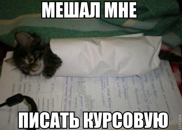 http://www.anekdotov-mnogo.ru/image-prikol/smeshnie_kartinki_138681933776.jpg