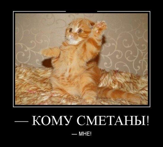 http://www.anekdotov-mnogo.ru/image-prikol/smeshnie_kartinki_138814602957.jpg