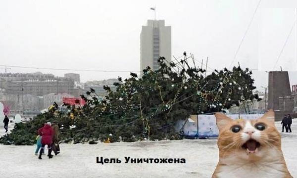 http://www.anekdotov-mnogo.ru/image-prikol/smeshnie_kartinki_138823282928.jpg