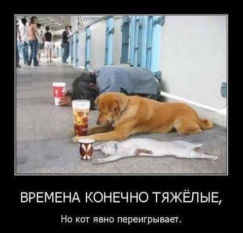 http://www.anekdotov-mnogo.ru/image-prikol/smeshnie_kartinki_13882328297.jpg