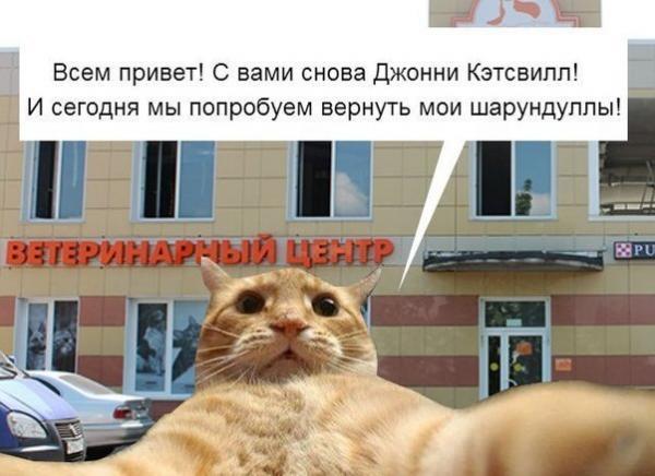 http://www.anekdotov-mnogo.ru/image-prikol/smeshnie_kartinki_138945280849.jpg