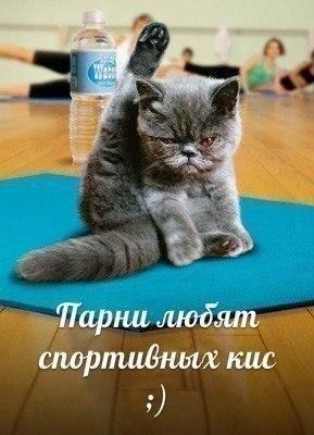 http://www.anekdotov-mnogo.ru/image-prikol/smeshnie_kartinki_139047189881.jpg