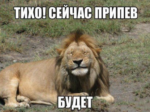 http://www.anekdotov-mnogo.ru/image-prikol/smeshnie_kartinki_139262248882.jpg