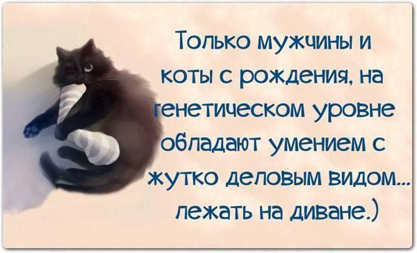 http://www.anekdotov-mnogo.ru/image-prikol/smeshnie_kartinki_139498307636.jpg
