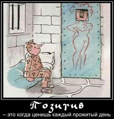 http://www.anekdotov-mnogo.ru/image-prikol/smeshnie_kartinki_141367821540.jpg