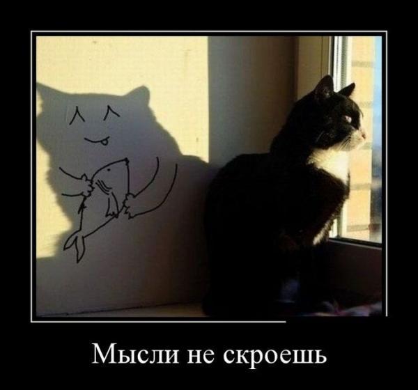 http://www.anekdotov-mnogo.ru/image-prikol/smeshnie_kartinki_141409519075.jpg