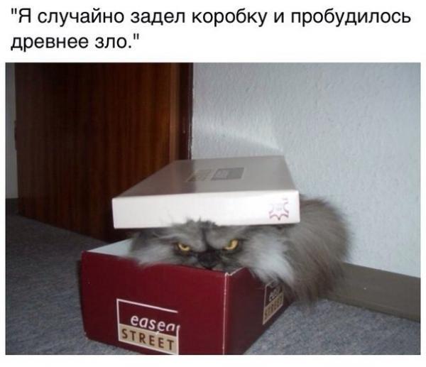 http://www.anekdotov-mnogo.ru/image-prikol/smeshnie_kartinki_141420244066.jpg